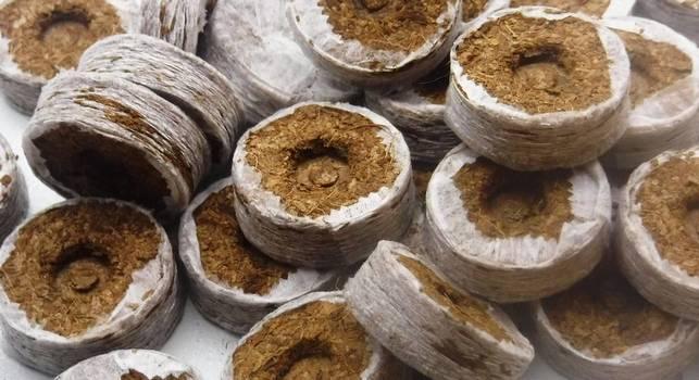 Кокосовые таблетки для посадки семян