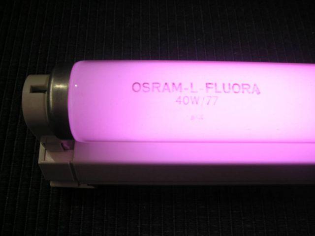 Люминесцентные фитолампы