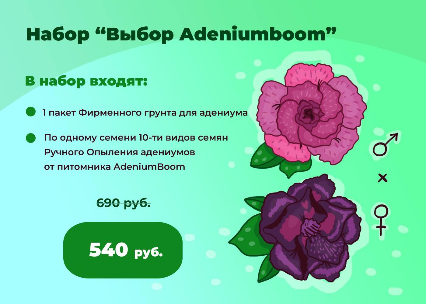 Набор семян «Выбор Adeniumboom»